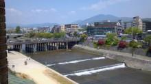 5月の京都観光:鴨川