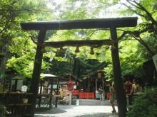 パワースポット:野宮神社