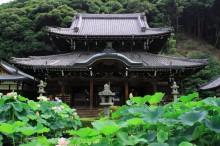 夏・おすすめスポット:三室戸寺