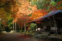 京都世界文化遺産:高山寺