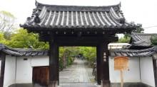 5月の京都観光:養源院