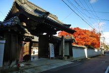 秋の特別公開:宝鏡寺