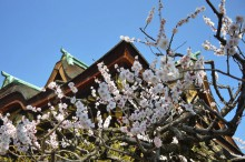 2月の京都観光:北野天満宮