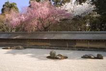 京都世界文化遺産:龍安寺