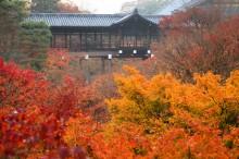 秋・紅葉おすすめスポット:東福寺