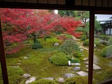 11月の京都観光:雲龍院